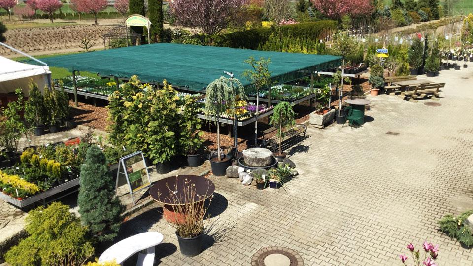 Pflanzenvielfalt Baumschule Karl