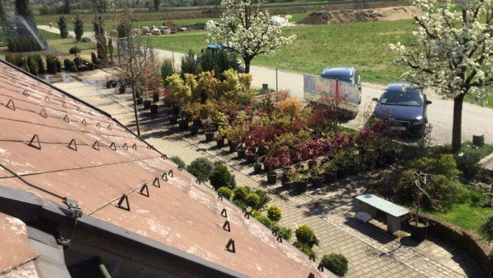 Parkplatz Baumschule Karl