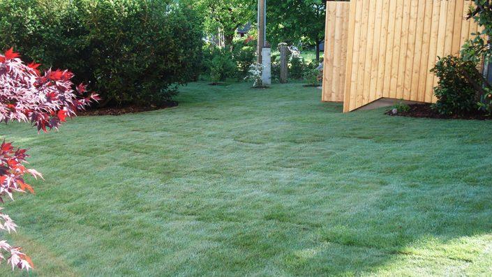 Gartengestaltung Rasen